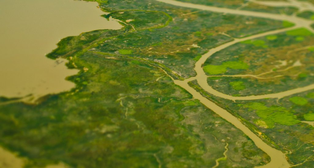Aerial view of flood plain